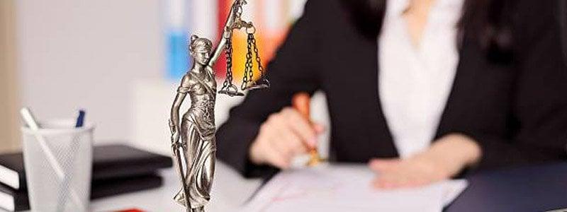 юрист трудовое право приморский район быть